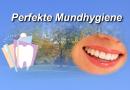 Perfekte Mundhygiene